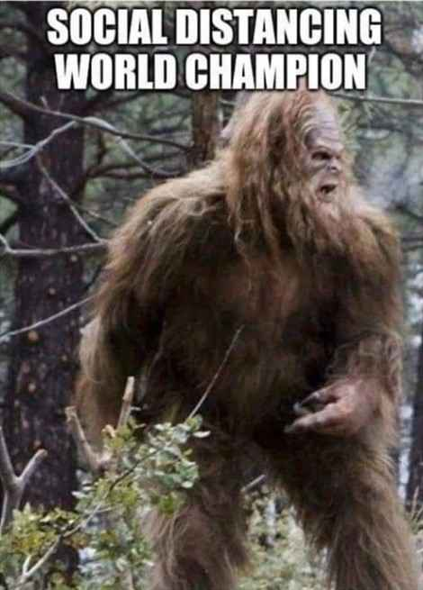 "Image depicts an image of Sasquatch aka Big Foot with the caption, ""Social Distancing Wold Champion"""